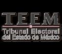 Tribunal Electoral del Estado de México