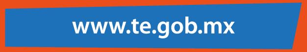 www.te.gob.mx