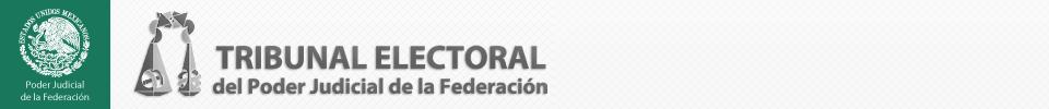 Logotipo del Tribunal Electoral del Poder Judicial de la Federación XX