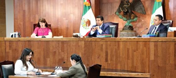 LA SALA REGIONAL GUADALAJARA DEL TEPJF CONFIRMA SANCIÓN IMPUESTA AL PARTIDO VERDE ECOLOGISTA DE MÉXICO