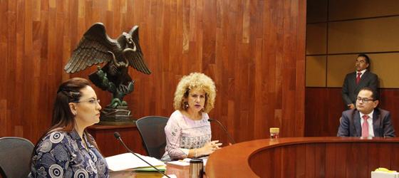 SALA ESPECIALIZADA: PVEM NO AFECTÓ A ASOCIACIÓN CON LA PROPUESTA DE CREAR BANCOS DE ALIMENTOS