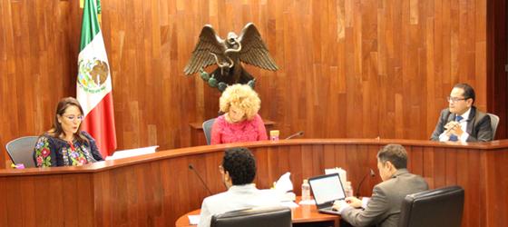 EL PARTIDO ACCIÓN NACIONAL VULNERÓ EL INTERÉS SUPERIOR DE LA NIÑEZ EN DIFERENTES PROMOCIONALES QUE PAUTÓ DURANTE PROCESO ELECTORAL CONCURRENTE: SALA ESPECIALIZADA