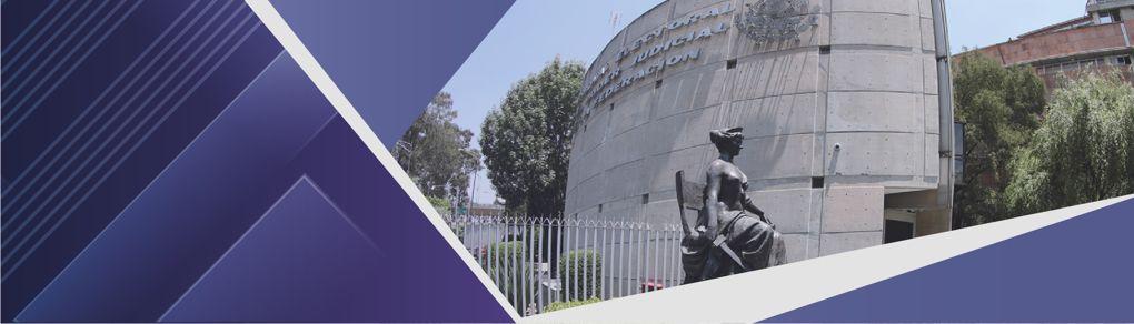 El pleno de la Sala Superior aprobó por unanimidad crear la Comisión de Fortalecimiento del Tribunal Electoral del Poder Judicial de la Federación