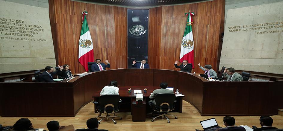 TEPJF desecha queja contra la postulación de Bertha Luján como consejera nacional de Morena