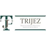 Logo Zacatecas