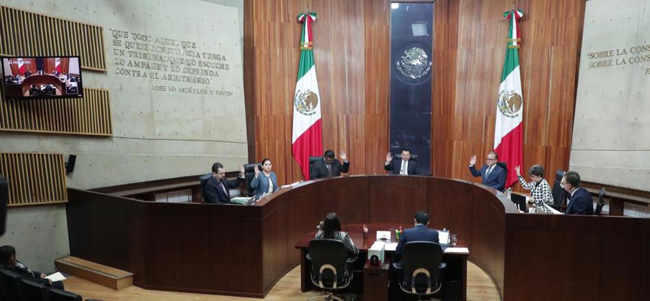 TEPJF revoca petición para separar de la bancada de Morena en el Senado a Lilly Téllez